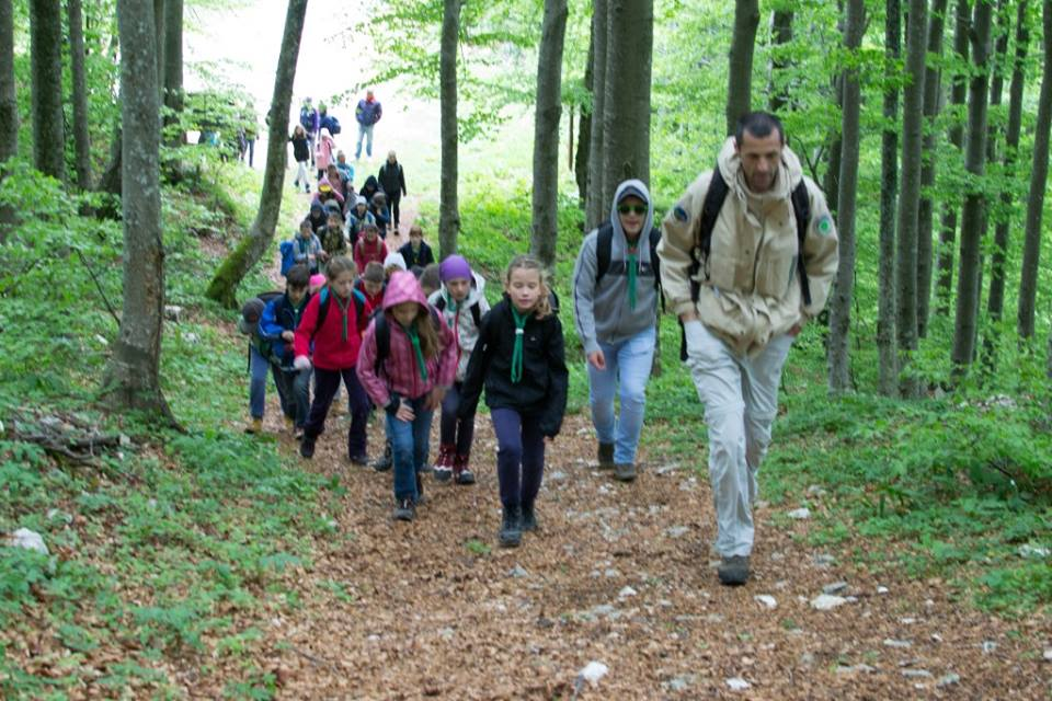 Read more about the article Kretanje i razvoj mišićne mase