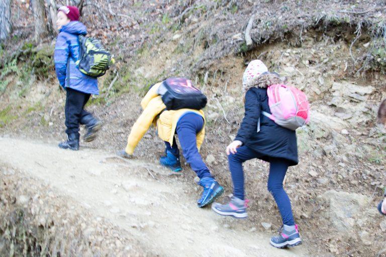 Read more about the article Pješački (kondicijski) izlet na Medvednicu