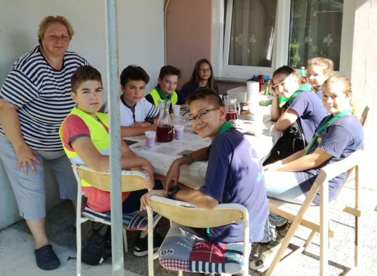 Read more about the article Žohari opasno grizu!