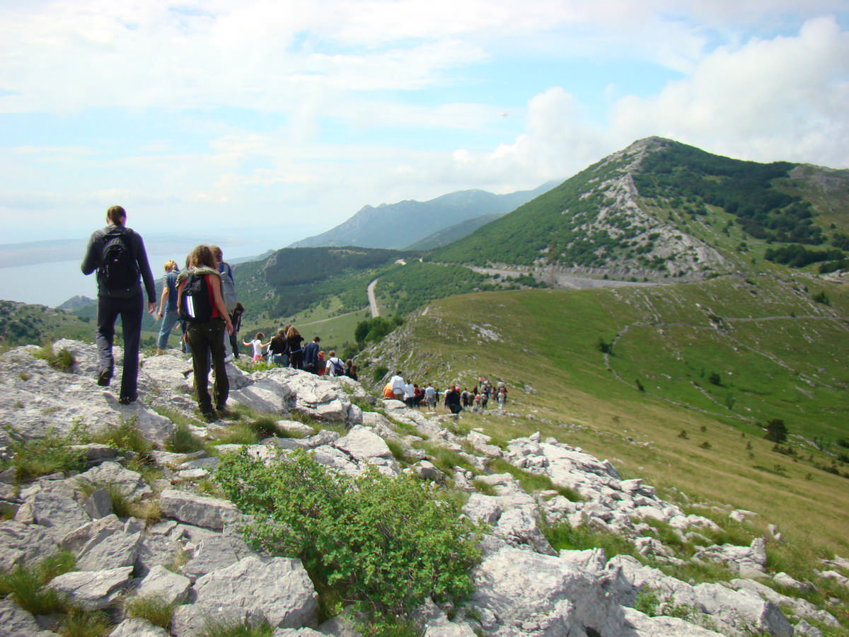 Read more about the article Edukativni zadatak za vučiće: Nacionalni parkovi
